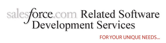 SalesForce Related Software Development Services